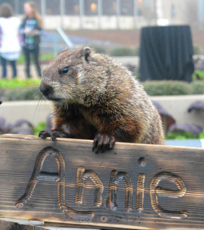 Groundhog ready to predict future