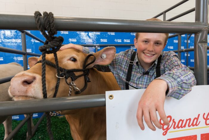State Fair livestock shows revised