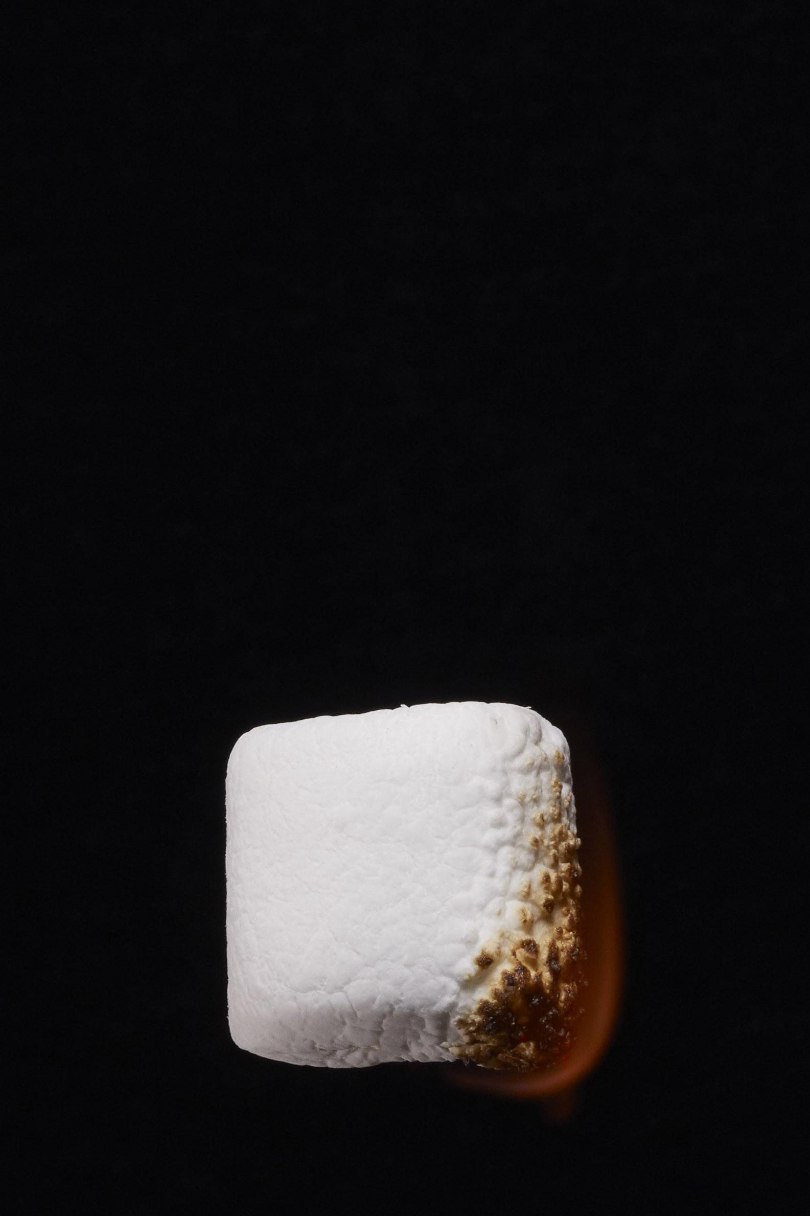 Marshmellow1337 begin