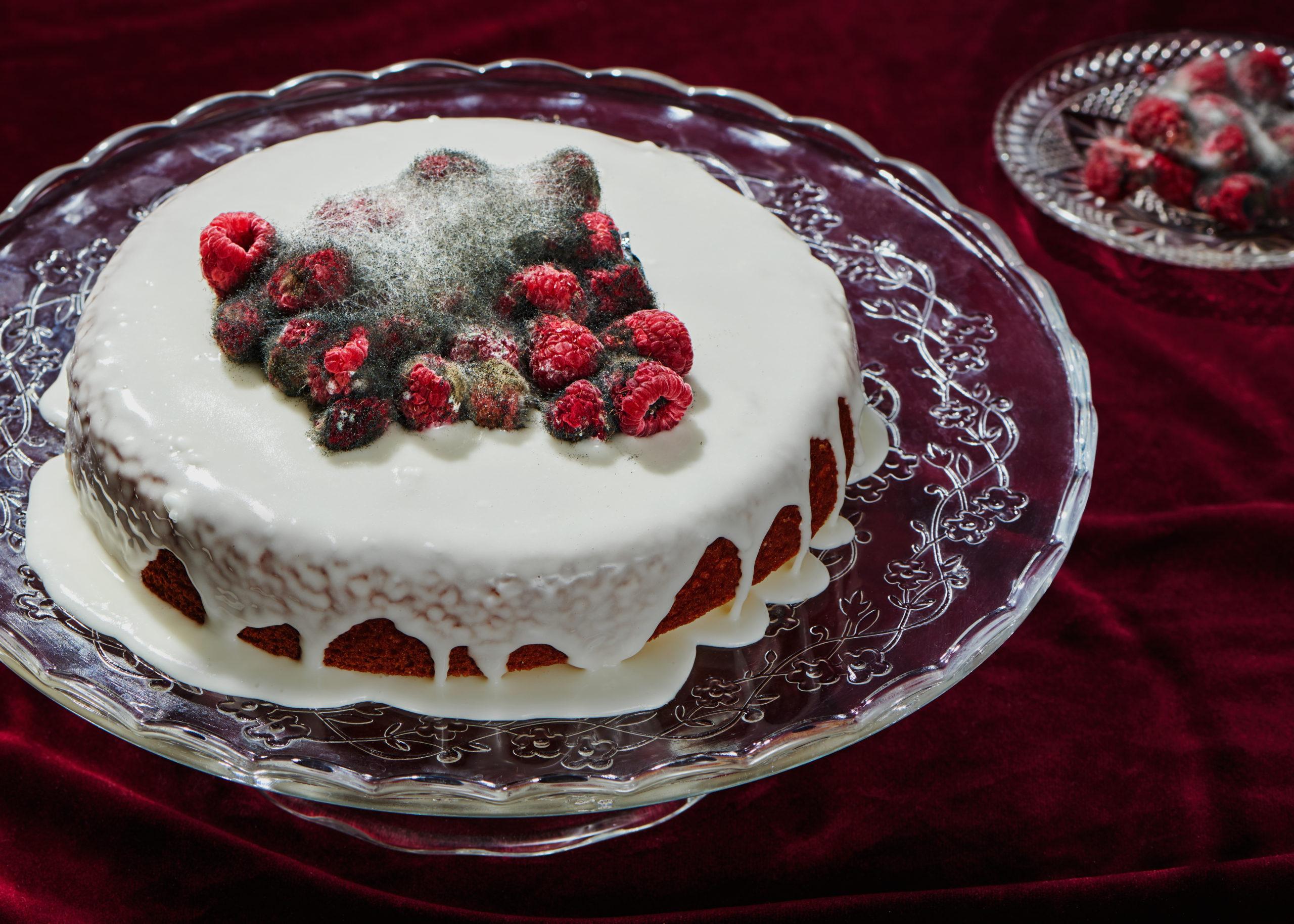 Spoiled Rotten -Cake – Yasara Gunawardena