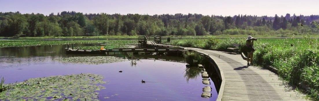 A photographer at Burnaby Lake.