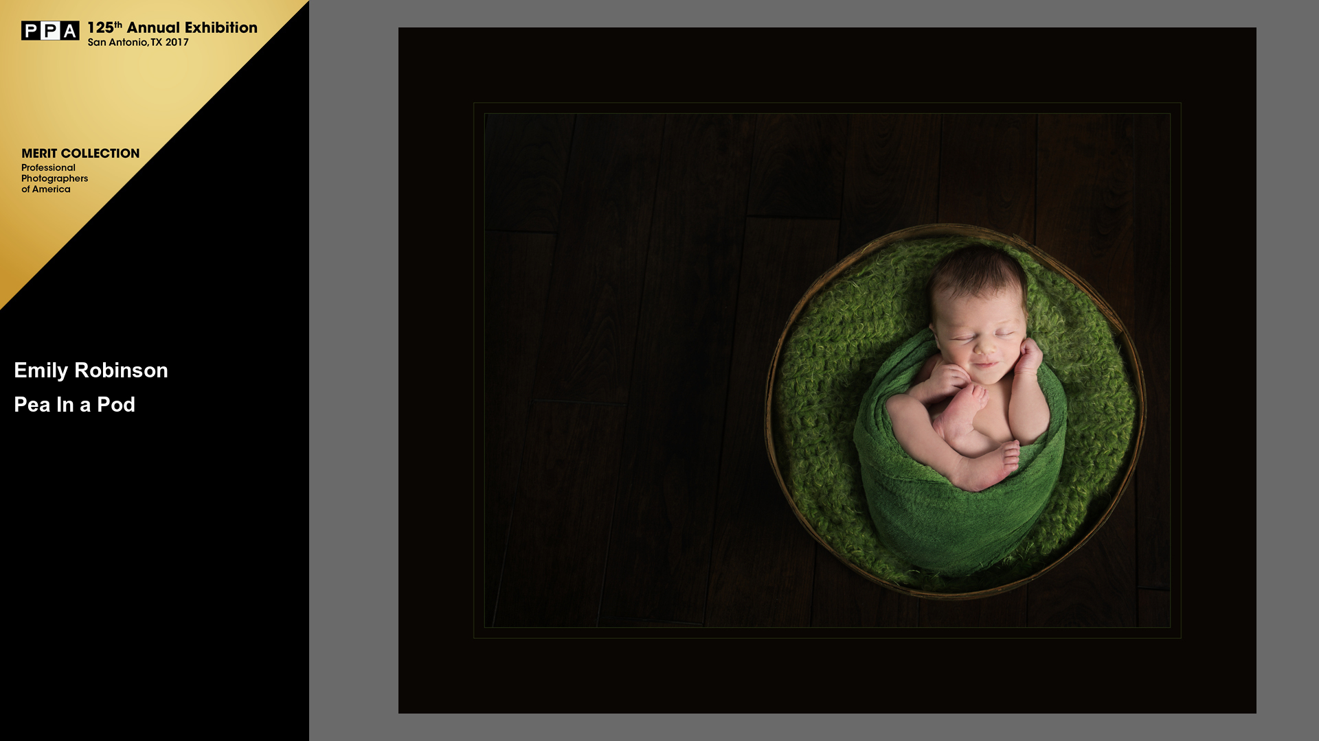 Pea in a Pod | Newborn Photographer | Award Winning Newborn Photos