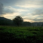 Snapshot of the Week: Cade's Cove, Tennessee