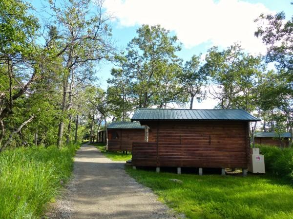 Brooks Falls- cabins