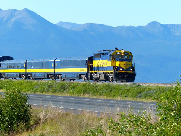 Potter Marsh- train