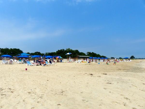 Paradise Ocean Club- beach and chairs