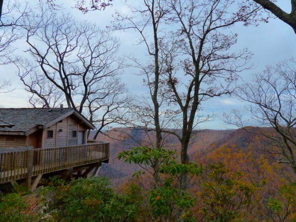 Primland- treehouse