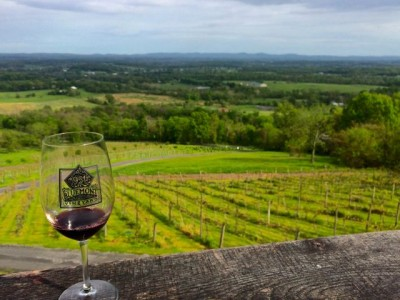 Bluemont Vineyard- view