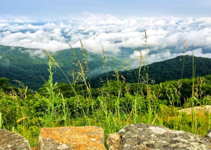 Shenandoah National Park- Skyline Drive View 4