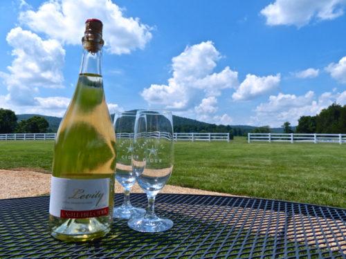 Charlottesville- Castle Hill Cider- Levity Cider