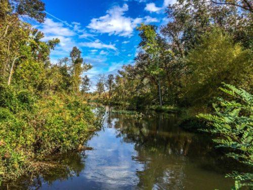 Day Trip to Occoquan- Occoquan Wildlife Refuge- creek
