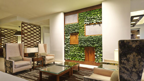 Westin-Wilmington-Vertical-Garden