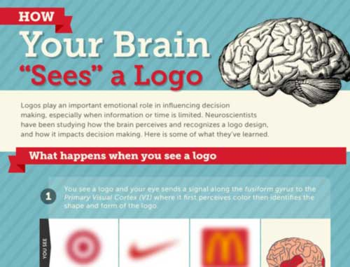 Your Brain on Logos: What Neuroscience Tells Us about Logo Design