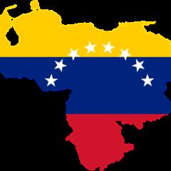 VENEZUELA: USURPACIÓN Y RECONOCIMIENTO DEMOCRÁTICO