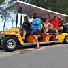 Rent Golf Carts