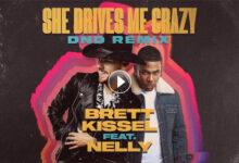 She Drives Me Crazy DND Remix