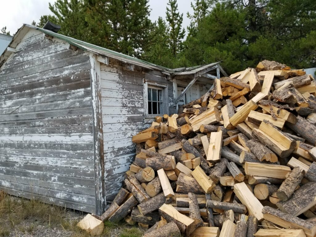 Dead wood x 2