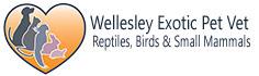 Wellesley Exotic Pet Vet | Richmond VA