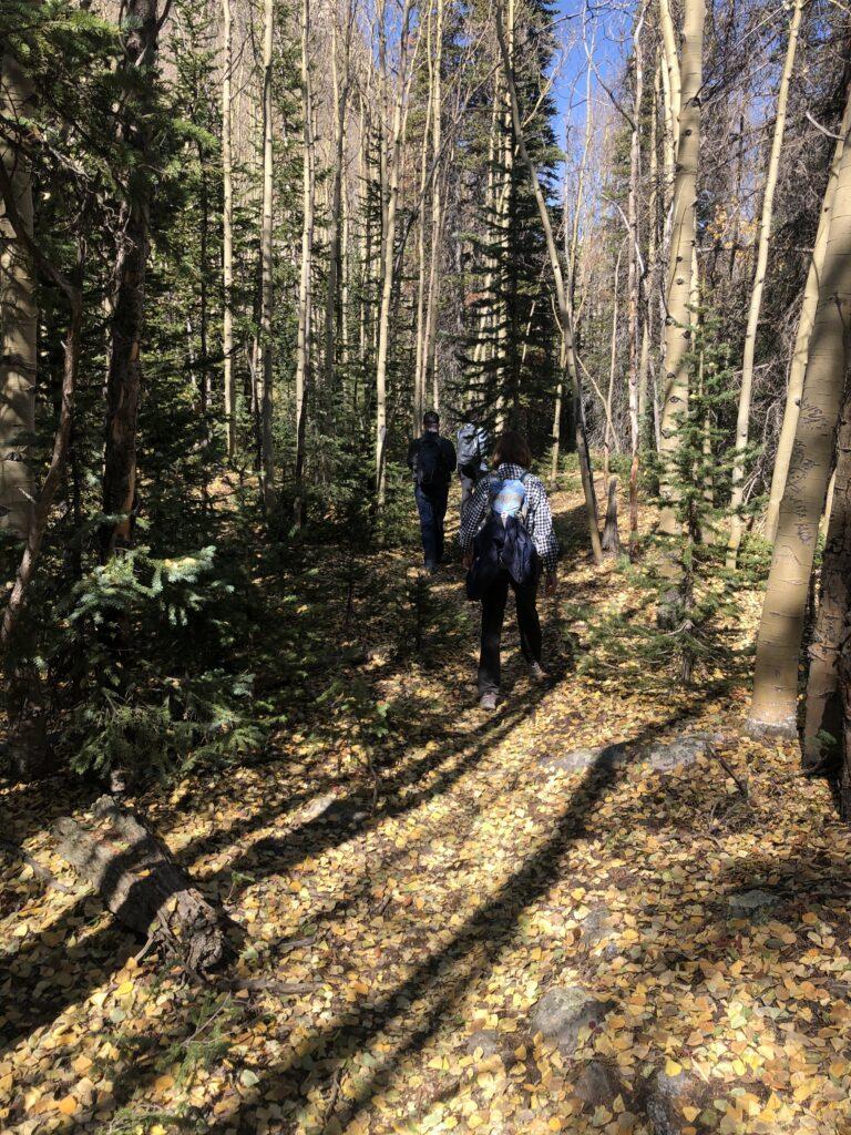 Fall Hiking in BV Colorado
