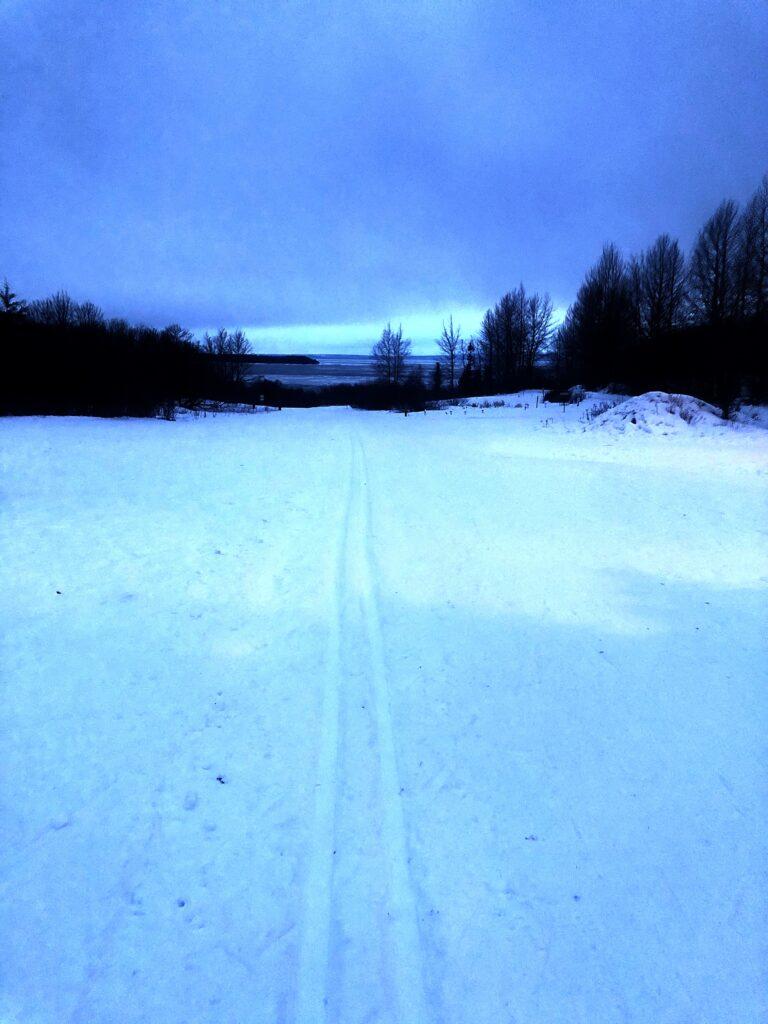 Winter in Alaska Ski Trail Kincaid Park