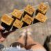 Vegan Pumpkin Cashew Cream Layer Bars