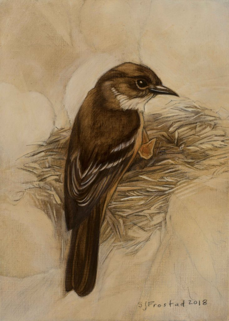 """Phoebe on the Nest, 2018. Graphite & oil on wood panel, 7x5"""" Sold"""