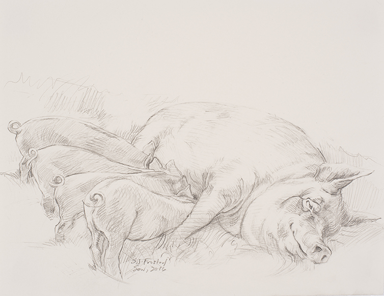 """Sow Study, 2016. Graphite on paper, 8.5x11"""" Sold"""