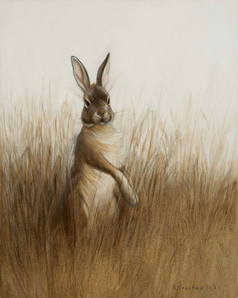 """Alter Hase, 2021. Graphite & oil on art board, 10x8"""" Sold"""