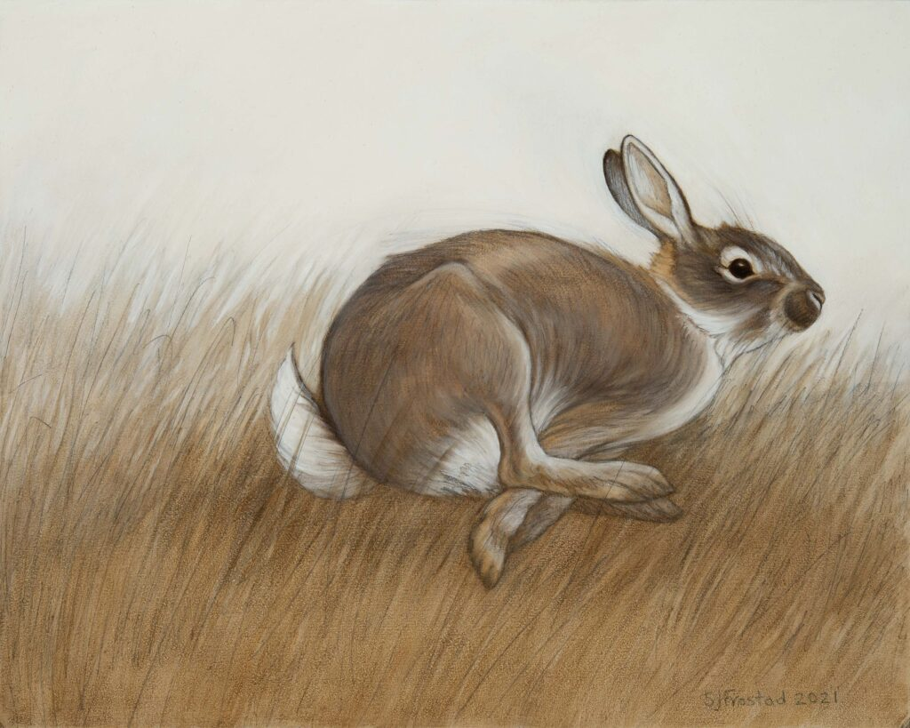 """Hop, 2021. Graphite & oil on wood panel, 8x10"""". Sold"""