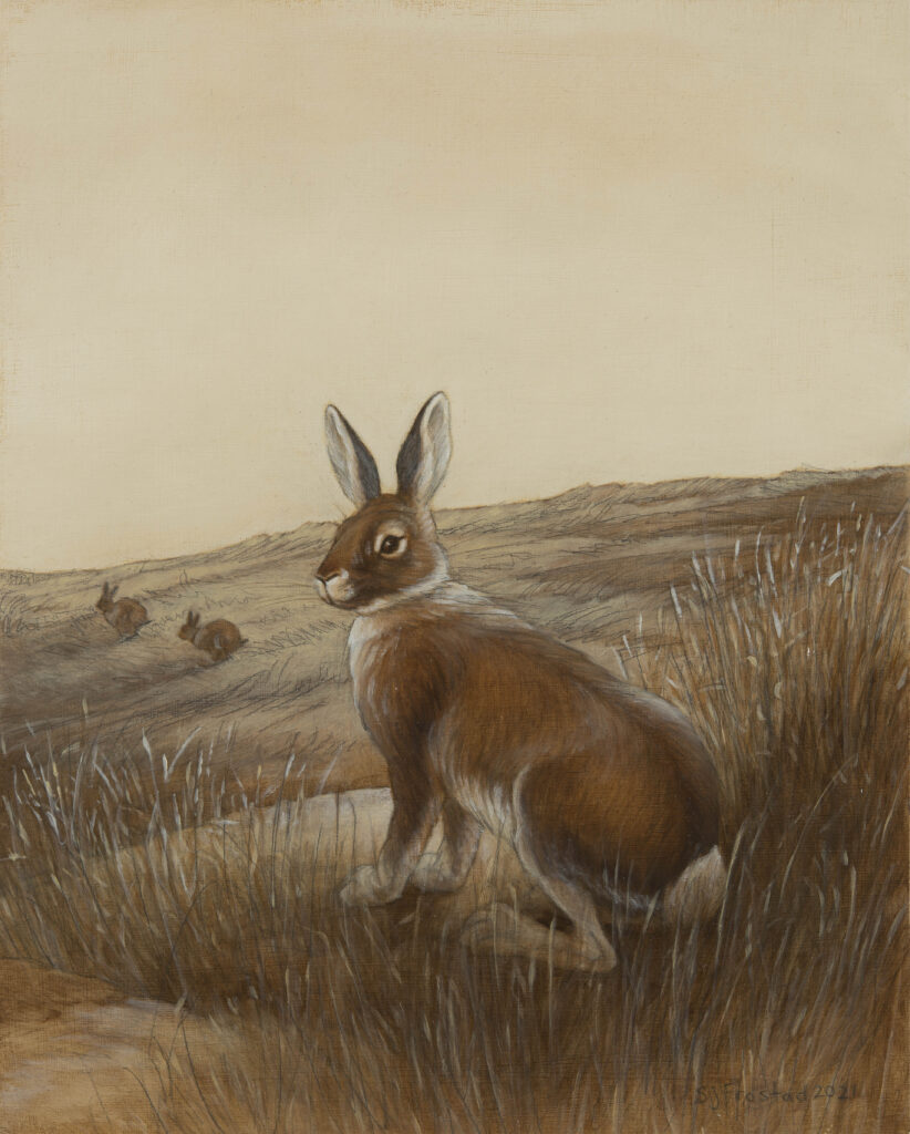 """Autumn Hare, 2021. Graphite & oil on wood panel, 10x8"""" Sold"""