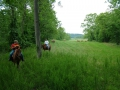 Trail_Ride_3_900.jpg