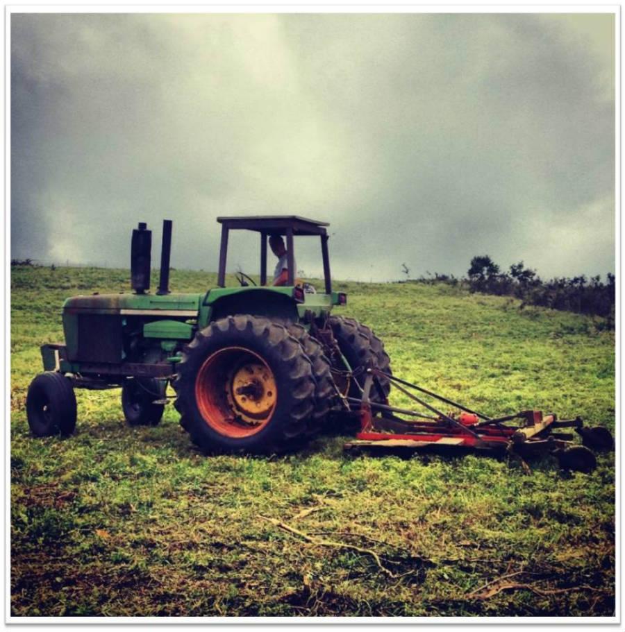 Tractor_Big_1_900.jpg