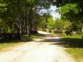 2_Main_Road_900.jpg