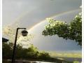 Double_Rainbow_Office_1_900.jpg