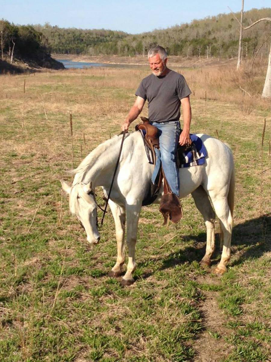 Horse_White_900.jpg