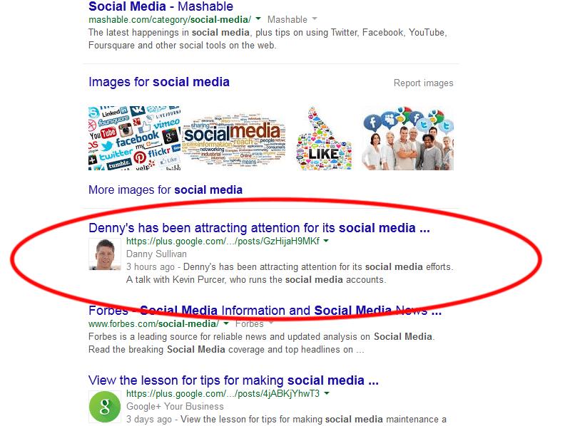 google_plus_result