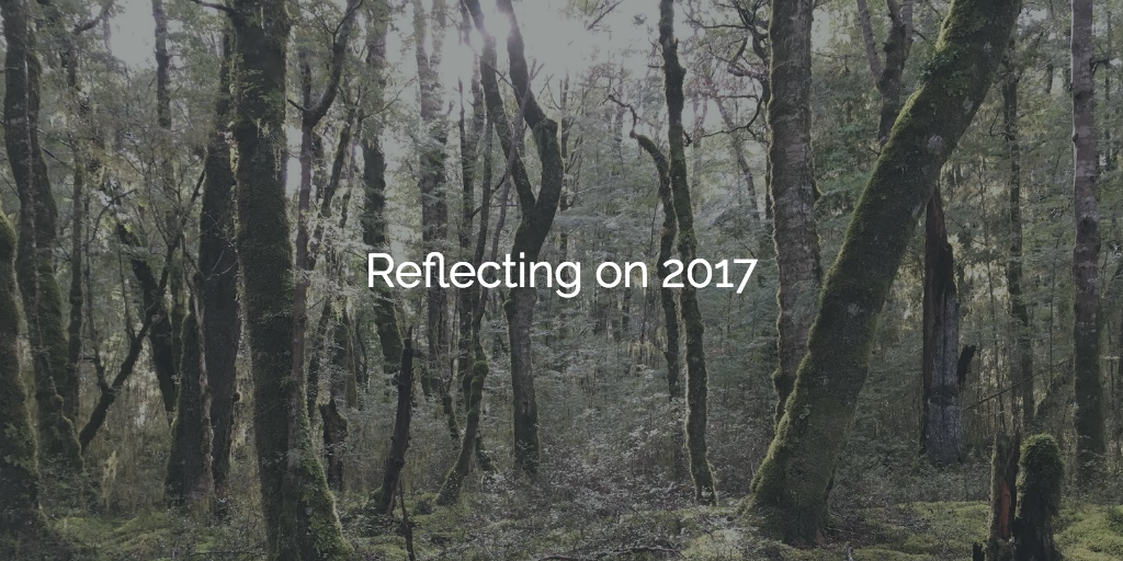 You are currently viewing Reflecting on 2017
