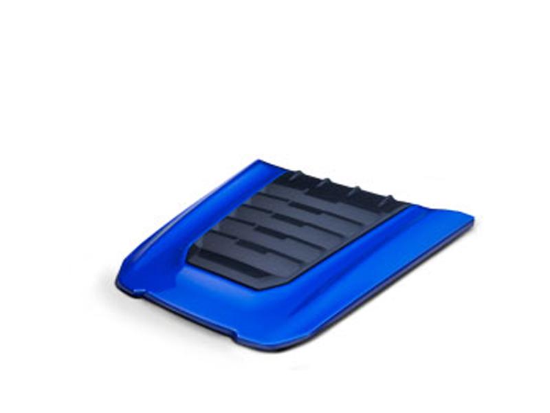 Blue-hood