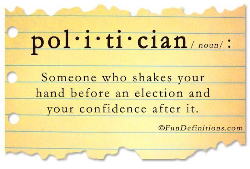 politician definition