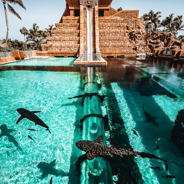 10 Best Things To Do In Nassau Bahamas