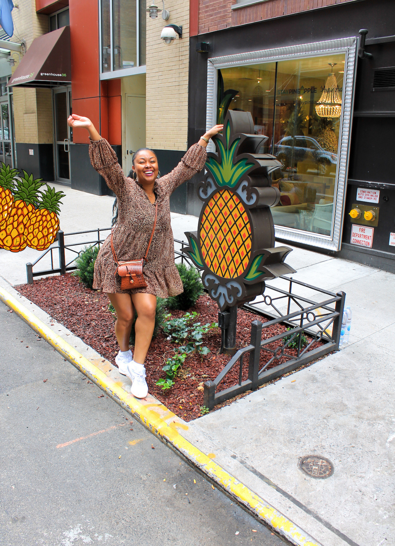 This Bahamian Gyal blogger Rogan Smith poses in front of the entrance to StayPineapple in New York City
