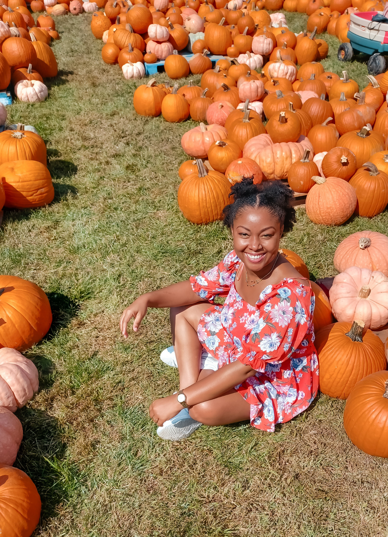 Light skinned black woman smiles and sits in the grass at a pumpkin patch in Alexandria Virginia This Bahamian Gyal