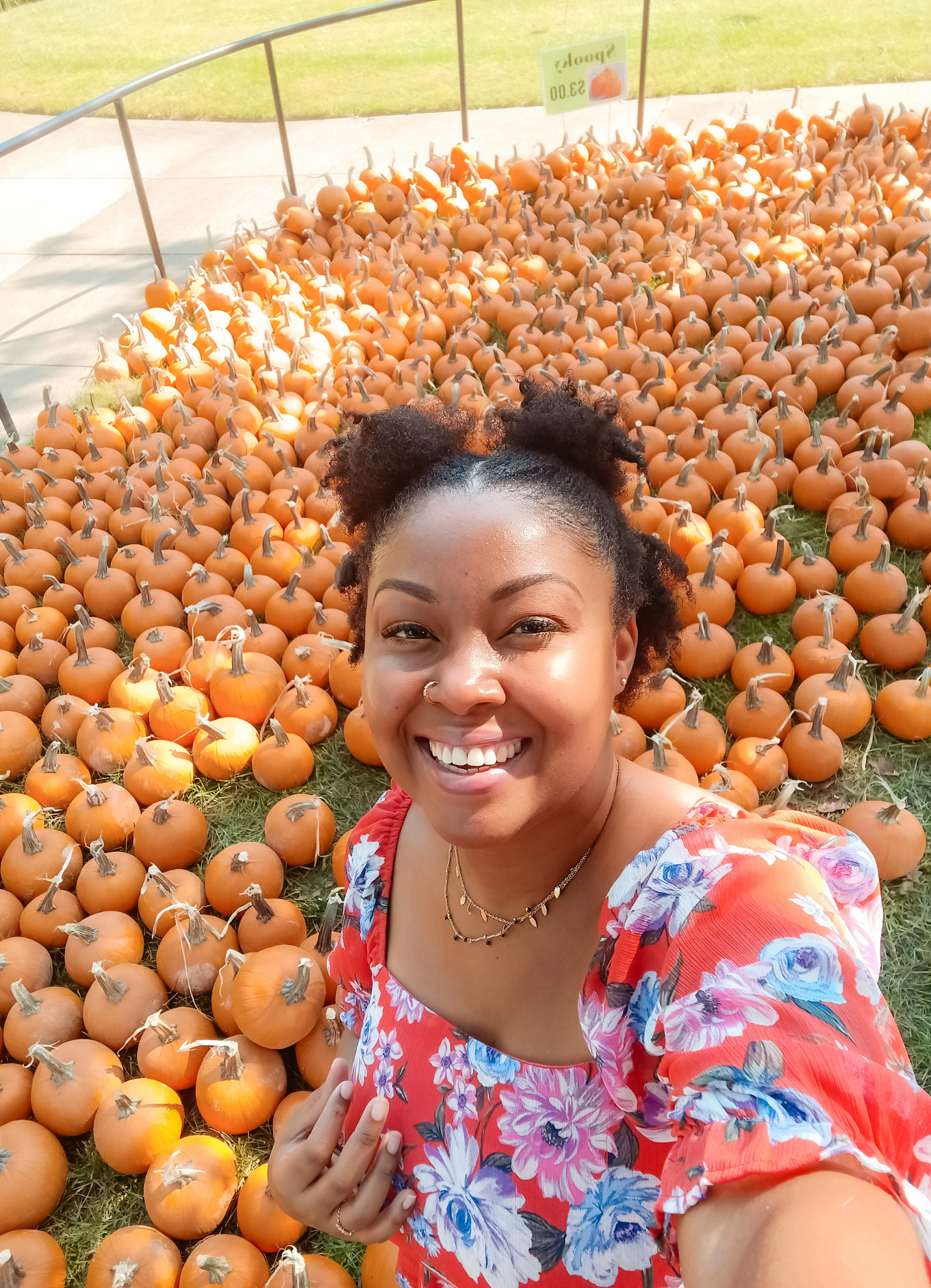 This Bahamian Gyal blogger, Rogan Smith poses in front of dozens of pumpkins