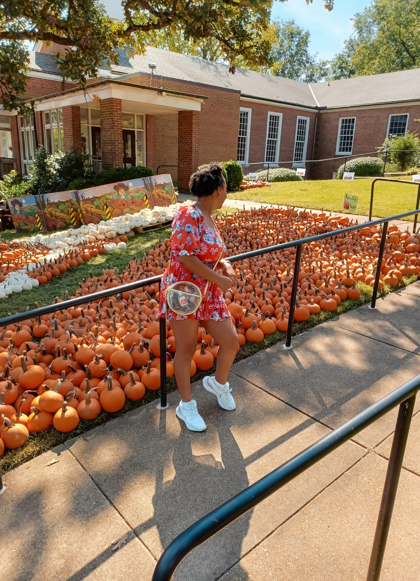 black female blogger poses near pumpkins in Alexandria, Virginia