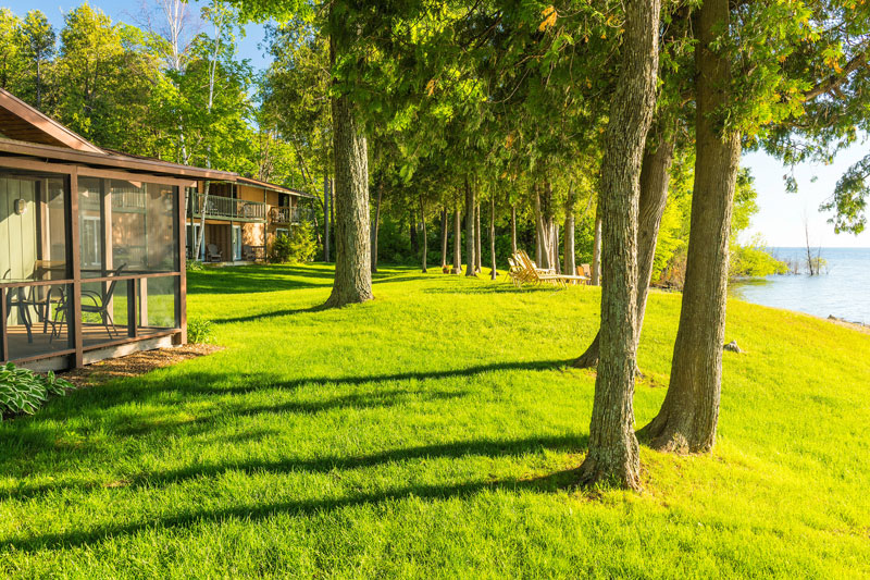 Sunlight, trees and shoreside accommodations