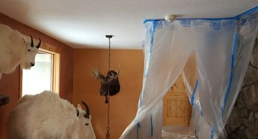 Home Maintenance Company Working on Living Space