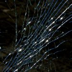 Emergency Auto Glass Repair