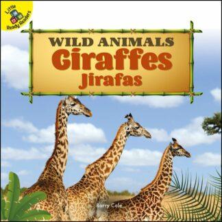 Wild Animals: Giraffes