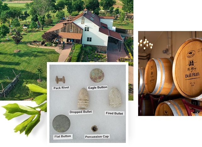 Photo collage of winery and barrels