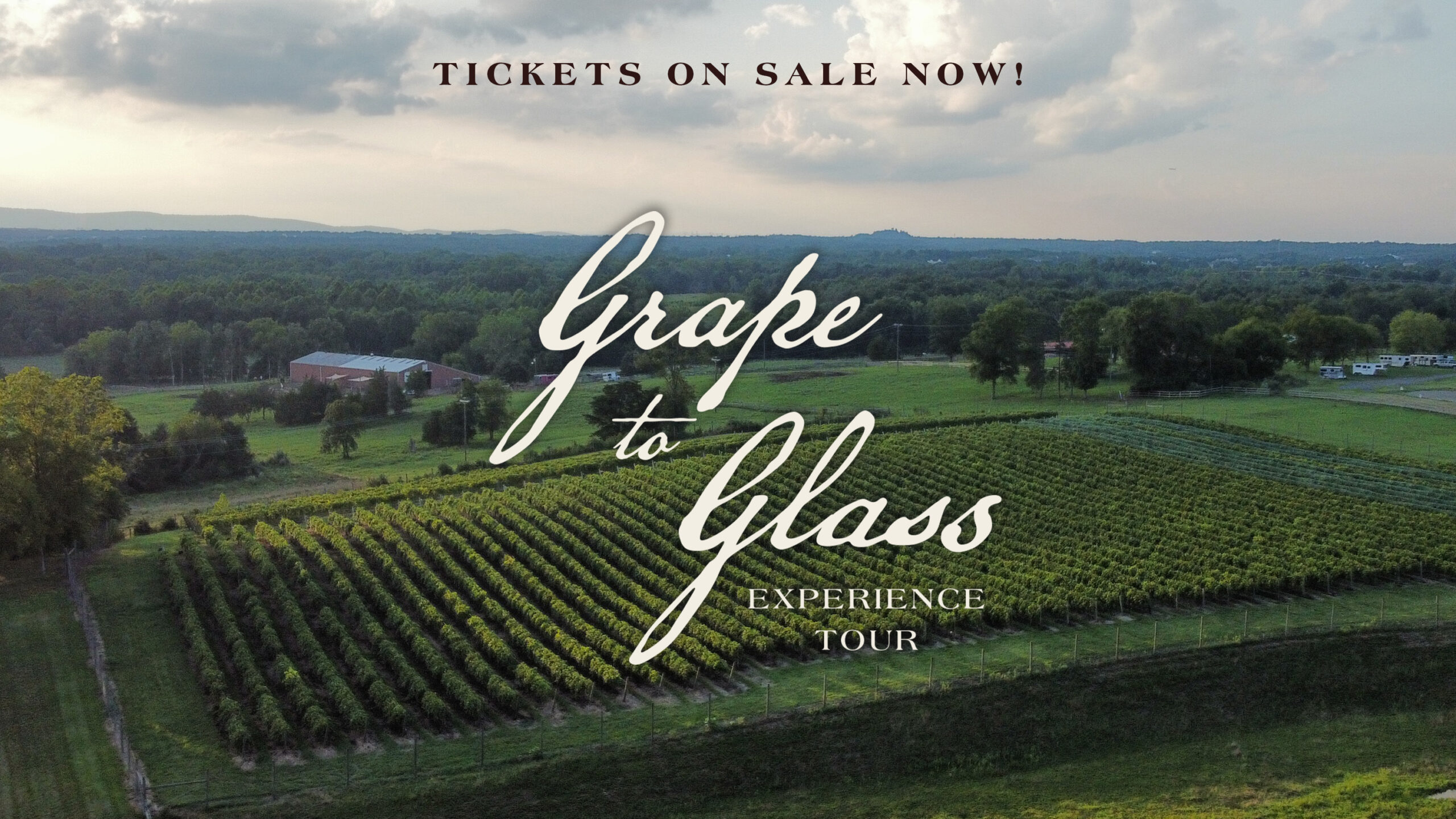 2 Grape to Glass Tickets